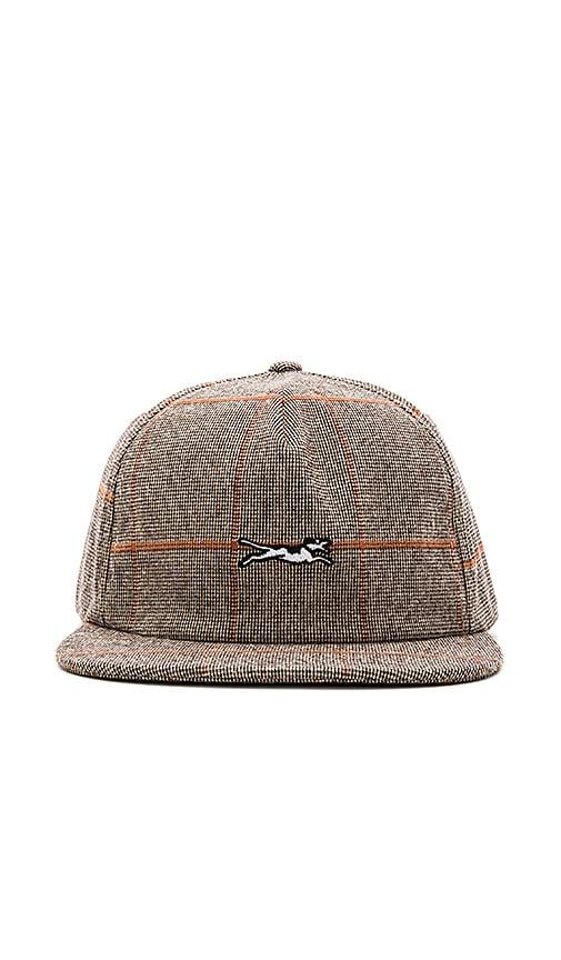 Stussy Ace Dog Snapback in Gray