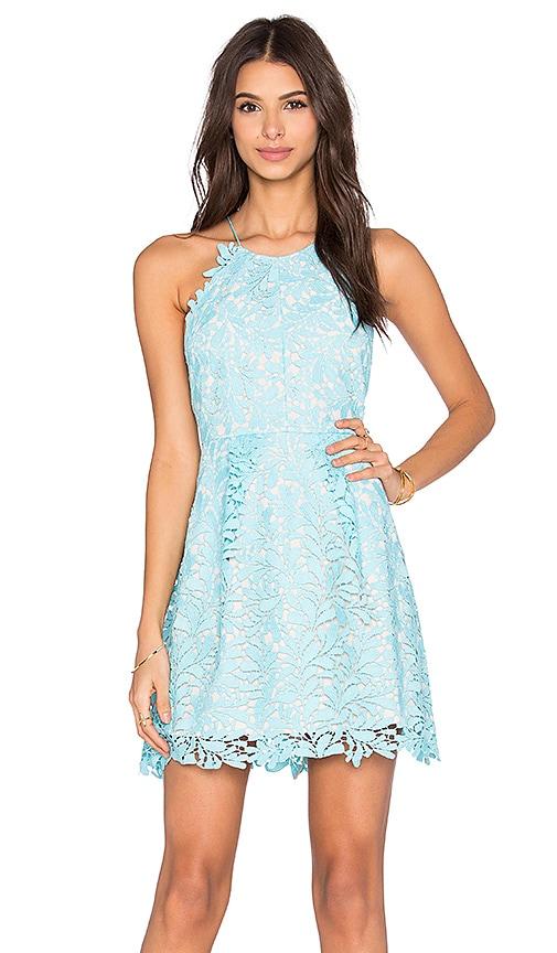 Viper Circle Dress
