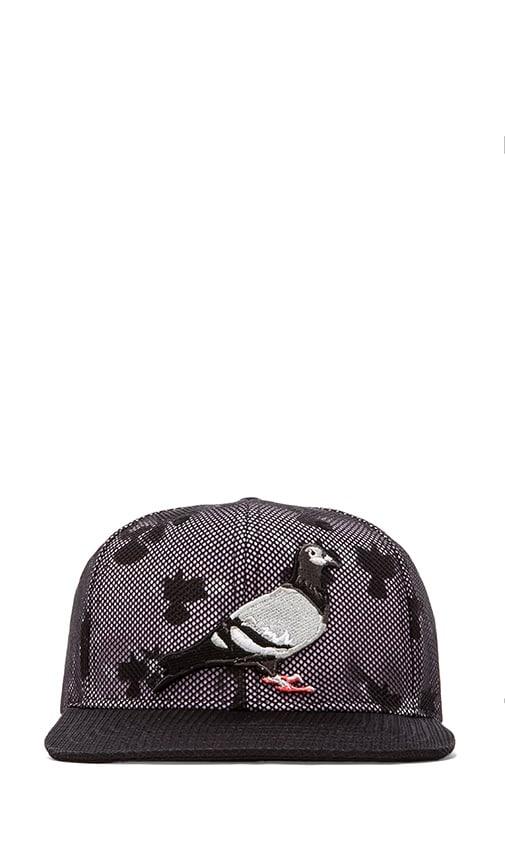 Inverse Pigeon Snapback