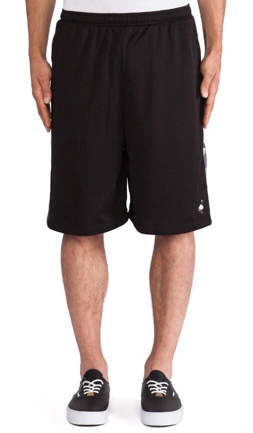 Fractal Mesh Short
