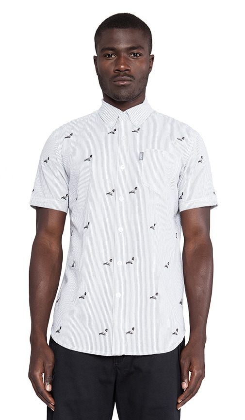 All Over Pigeon Button Down