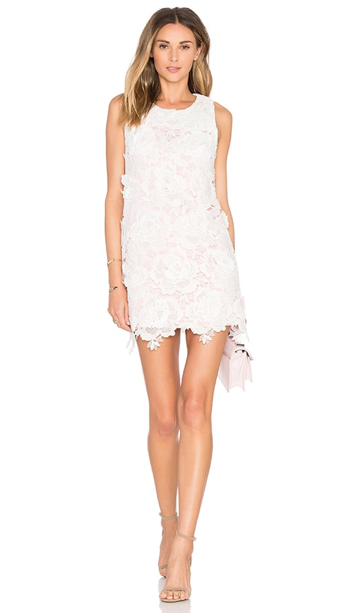 State of Being Roses Only Mini Dress in Blush & White