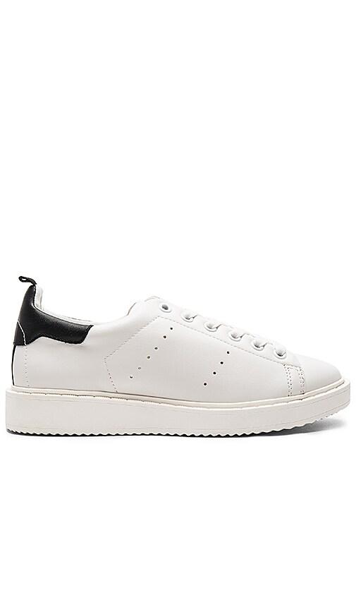 Steven Macie Sneaker in White