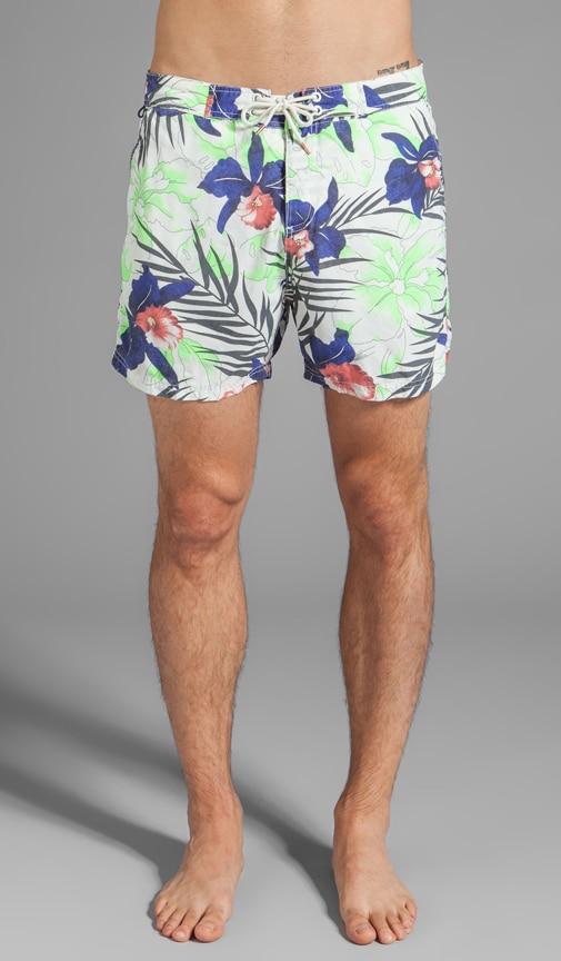 Floral Print Swim Short