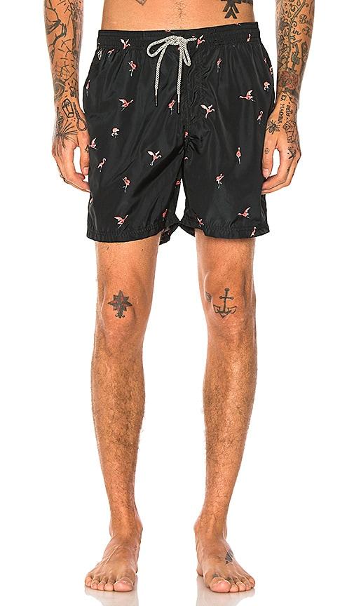 Scotch & Soda Swim Shorts in Black