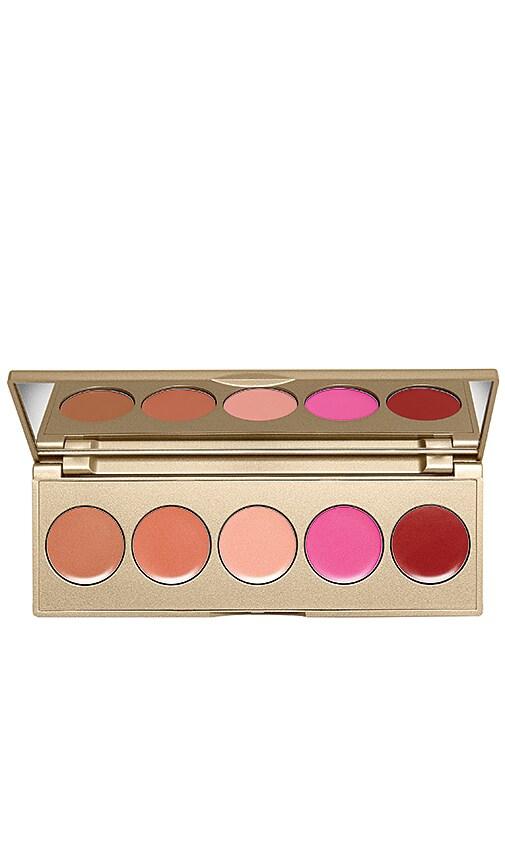 Lip & Cheek Convertible Color 5 Pan Palette