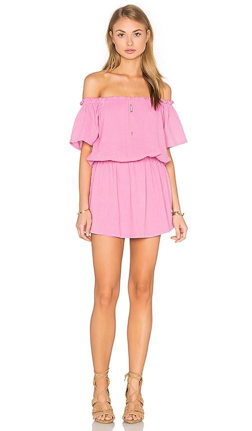 Steele Seneca Dress in Pink