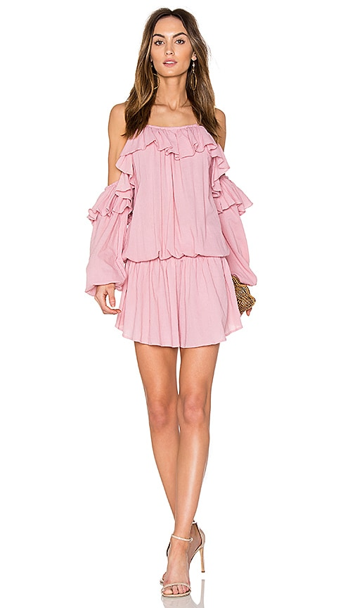 Steele Savannah Mini Dress in Pink