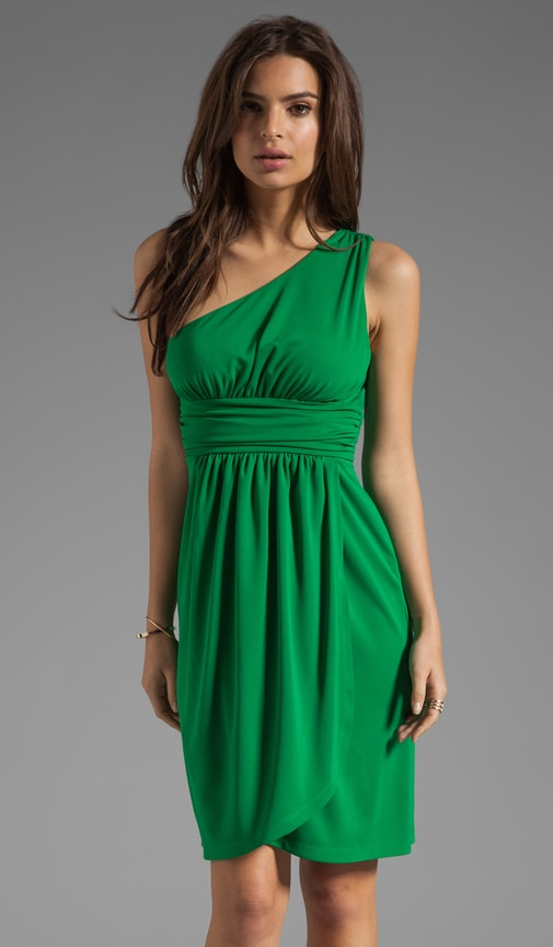 Gabrielle One Shoulder Dress