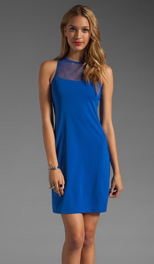 Mesh Louise Dress