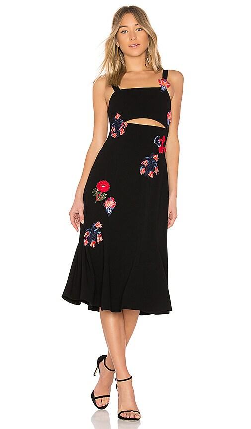 Tanya Taylor Olivia Dress in Black