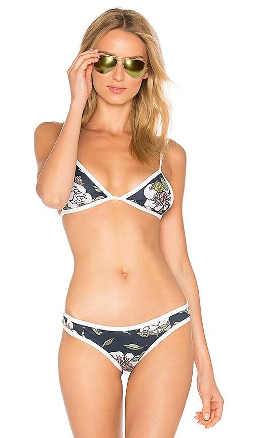 TAVIK Swimwear Jett Bikini Top in Blue