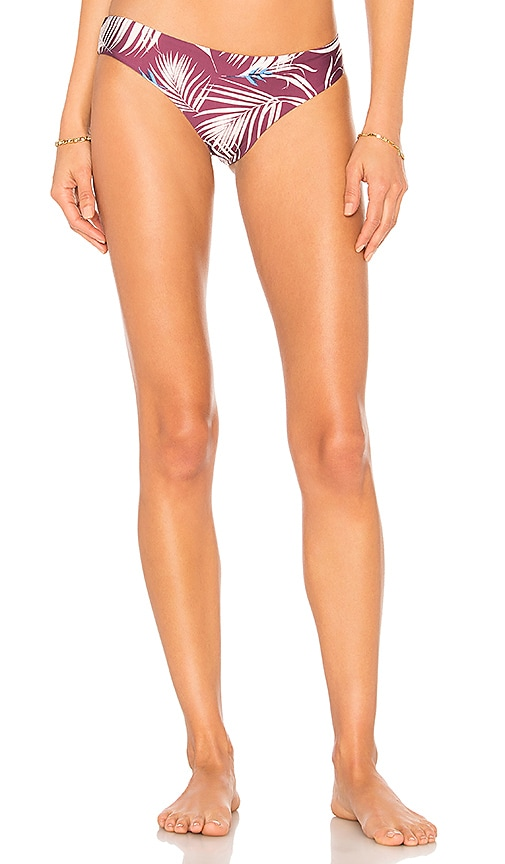 TAVIK Swimwear Ali Bikini Bottom in Purple