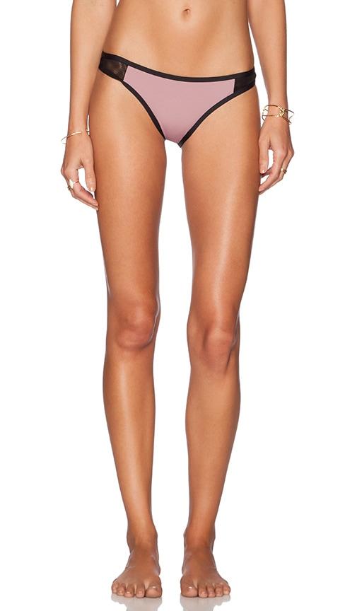 TAVIK Swimwear Jayden Bikini Bottom in Rose