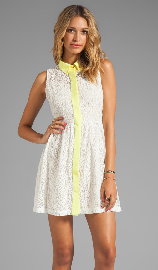 Lace Oxford Dress