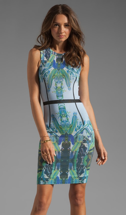 Trace Sleeveless Dress