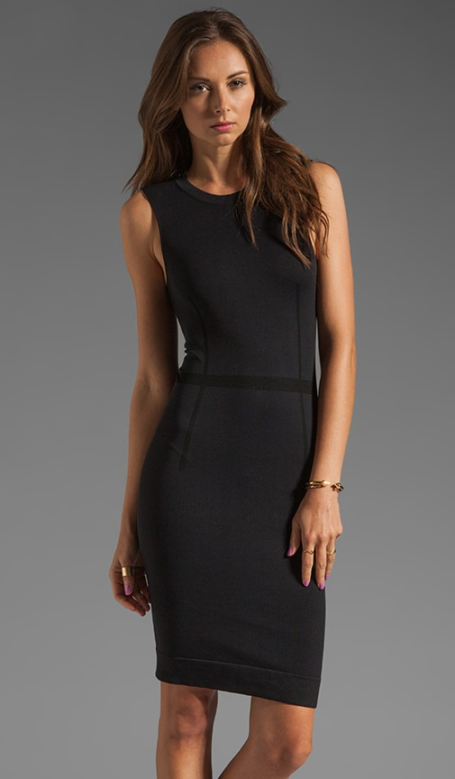 Trace Sleeveless Dress