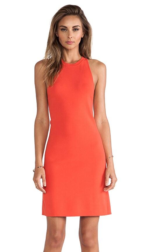 Wellra Dress