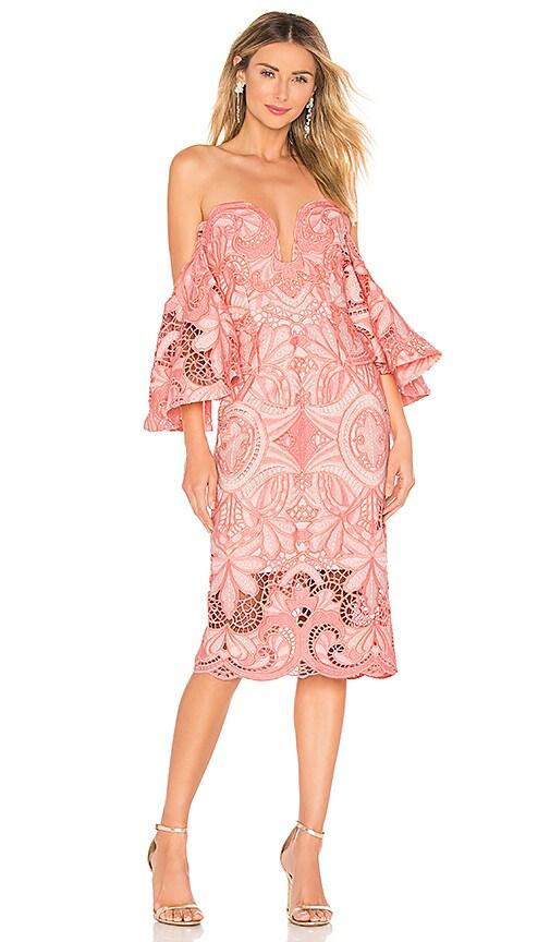 Orissa Lace Strapless Dress
