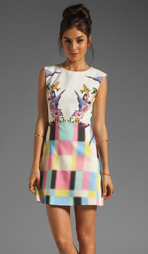 Eyespy Sleeveless Dress