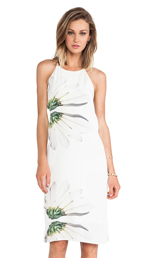 Emme Halter Dress