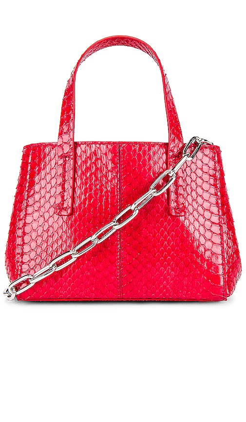 Le Client Chain Ayers Water Snake Mini Bag