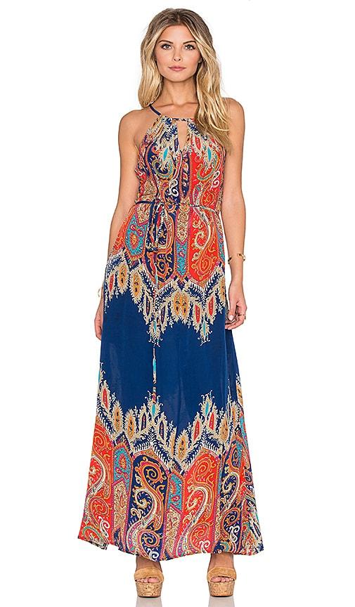 Tolani Stefani Maxi Dress in Paisley