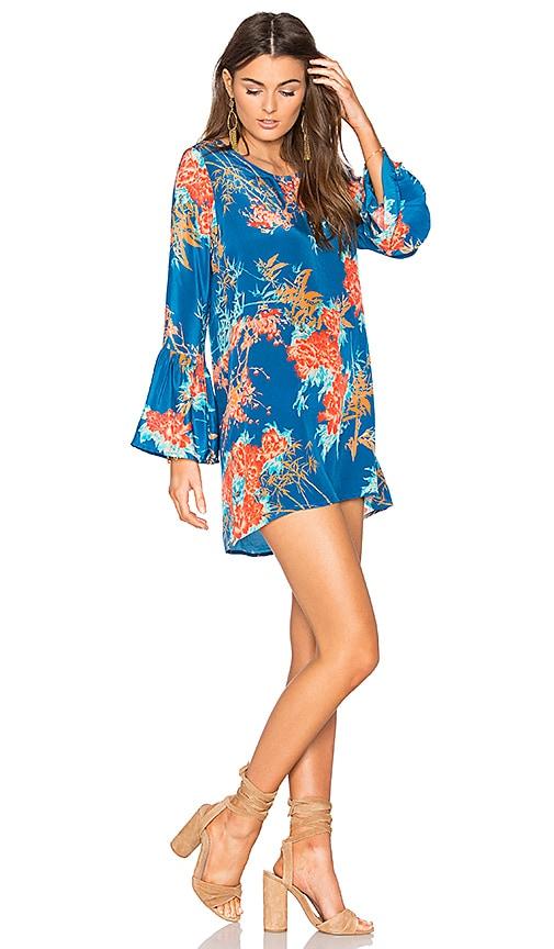 Tolani Belle Dress in Blue
