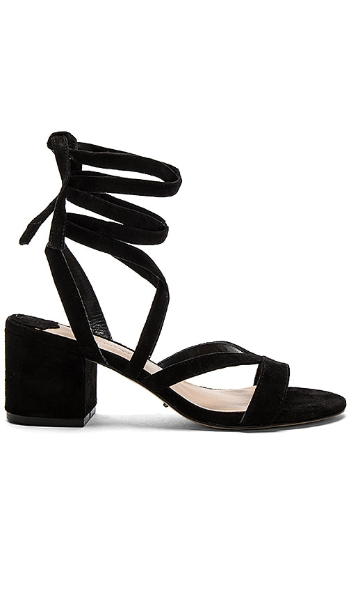 Tony Bianco Amor Heel in Black