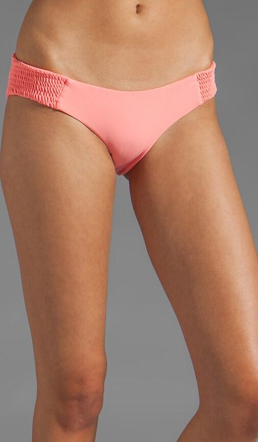 Daisy Bikini Bottom