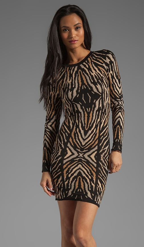 Emma Long Sleeve Zebra Jacquard Dress