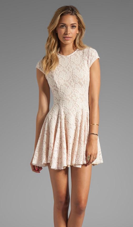 Cristal Lace Dress
