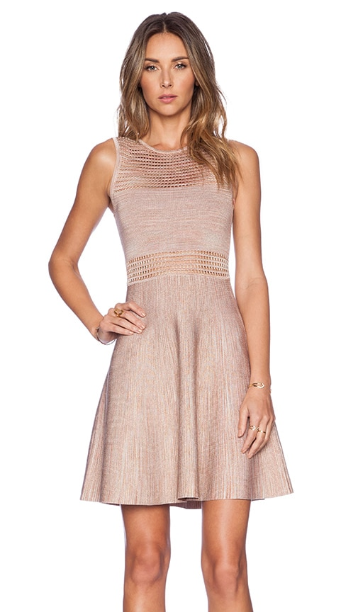 Torn by Ronny Kobo Mabel Dress in Blush