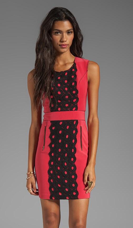 Lightweight Neoprene Lace Front Shift Dress