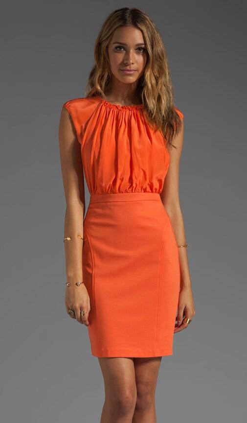 Peppy Dress