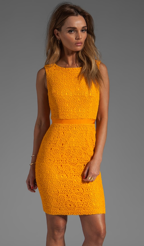 B-Line Dress