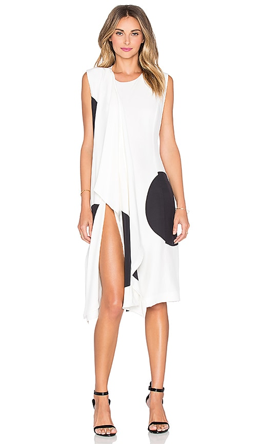 TY-LR The Silk Dot Philo Dress in Black & White