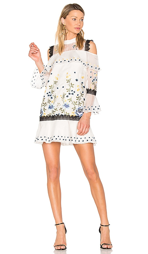 AMUR Allison Dress in Ivory