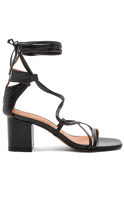 Urge Jessie Heels in Black