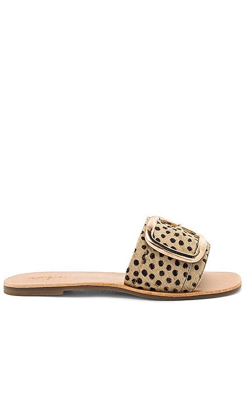 Urge Ajay Calf Hair Sandal in Tan