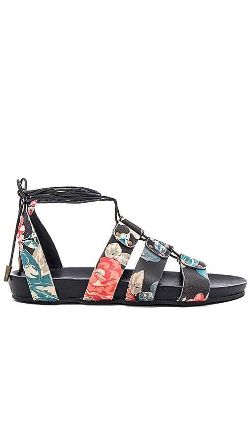 Urge Loulou Sandal in Black