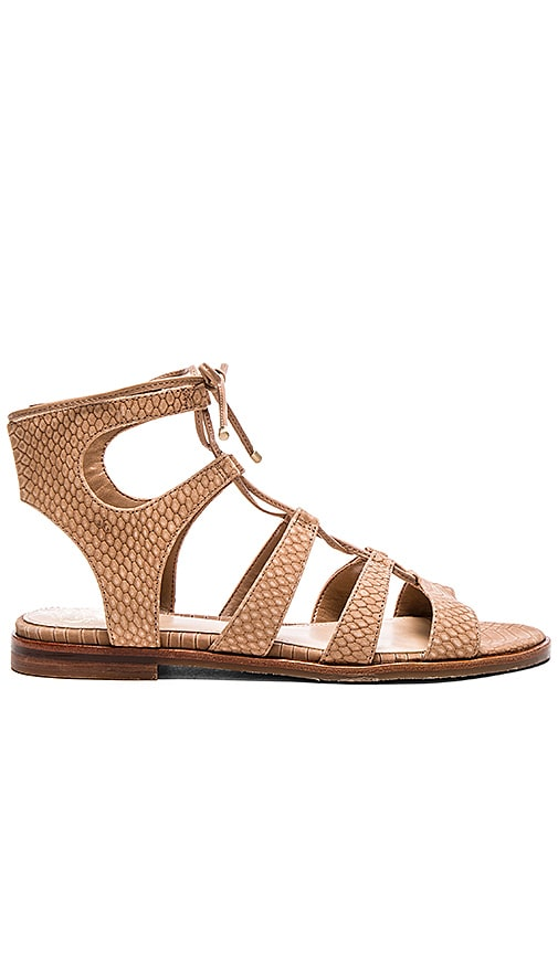 Vince Camuto Tany Sandal in Mochaccino