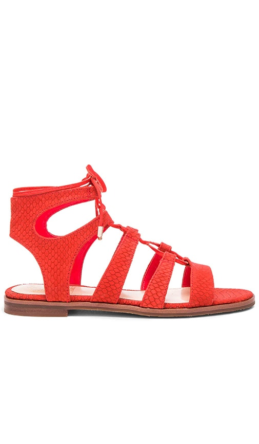 Vince Camuto Tany Sandal in Red