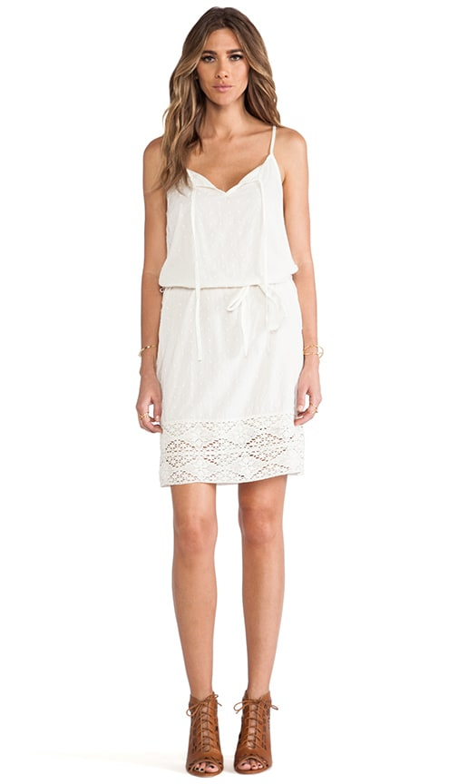 Jo Sheer Dobby Lace Dress