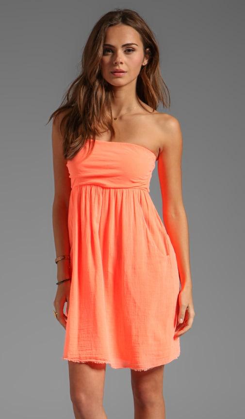 Hayzelle Sheer Jersey Dress