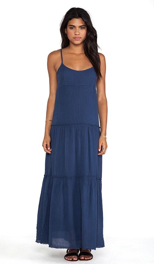Delize Sheer Jersey Dress