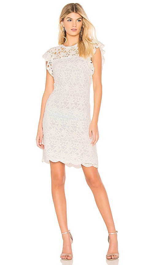 Velvet by Graham & Spencer Ally Dress in White
