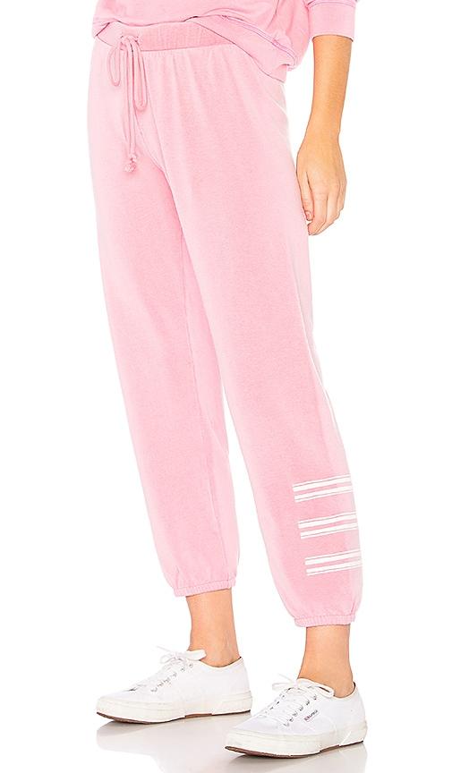 Velvet by Graham & Spencer Della Sweatpant in Pink