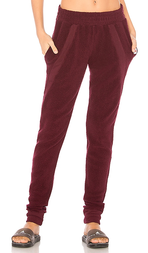 Vimmia Warmth Sweat Pant in Burgundy