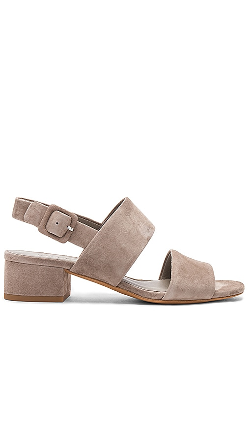Vince Taye Heel in Gray
